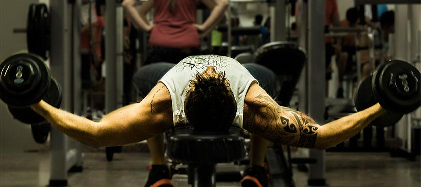 Banner Musculação